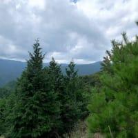 竹呂山からカンカケ峠へ