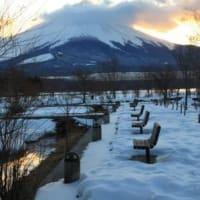 富士山を写す