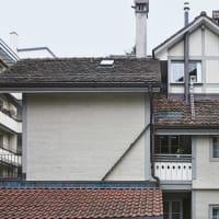 ネコの自由を重んじる国スイス「ネコ専用はしご」