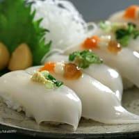 槍烏賊の握り寿司