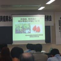 いちごの防除研修会を開催しました。