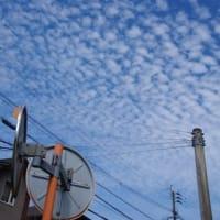 200917 菅内閣発足!鱗雲下界未来は憂いあり!?
