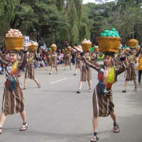 """The 20th Baguio Flower Festival """"Panagbenga 2015"""""""