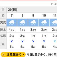 2つの天気予報