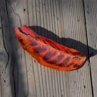 華やかな彩りが日々山を下る、信州の紅葉。