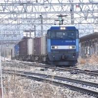 3月21日撮影 中央東線貨物2083レ 梅の花と絡めてより