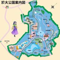 於大公園の花 : センニチコウ・・・東京五輪が開幕すると言うのにあまり話題にはなりませんでした。