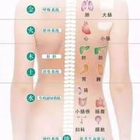定番メニュー【経絡デトックスオイルマッサージ】の目的