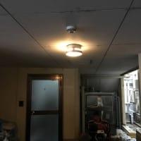 お勧めの「玄関照明」
