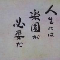 三浦のメロン&西瓜・・本番!!