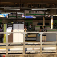 特急「成田エクスプレス39号」 大崎駅付近通過 (2019年8月)