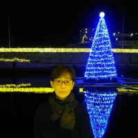 気仙沼内湾の電飾と妻