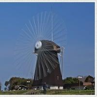花博記念公園の風車