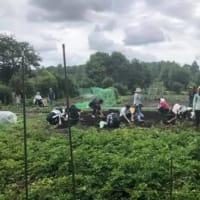 6.22福祉農園開園20周年事業 雨にも負けず無事に終わる