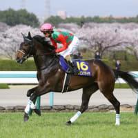競馬 京都牝馬S&ダイヤモンドSの予想(2020)