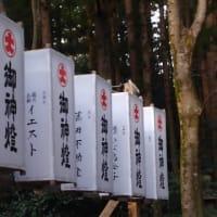 「弥彦神社」へ行っていきました