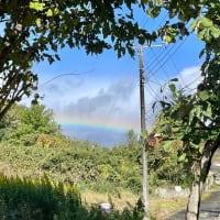 N-VAN用冬タイヤと虹