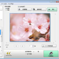 EPSON E-Photo の仕様???