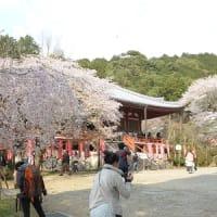 第11番 醍醐寺