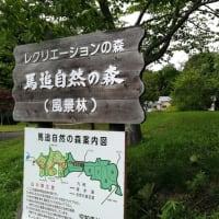 長官山でトレーニングその2 平成30年6月25日(月) (そのうち削除する日記)