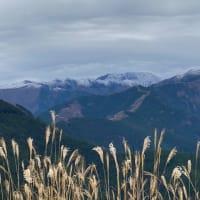 セローで紅葉も終わった冬山へ。
