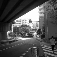 今泉 No.2  (中央区)