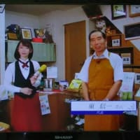 今日のお昼、MRO-TV「情報ソムリエ」にしんちゃんの店が放送されました・・・録画で見ましたが・・・しどろもどろの所は、カットで助かりました。