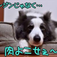 わたしだけ?(* ´艸`)クスクス