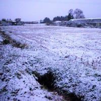 19-12-04 積雪2センチ