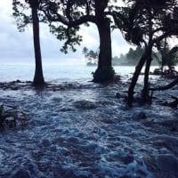 ツバルなど島しょ国家  海面上昇による水没・洪水被害で国家の存続をかけた取り組み