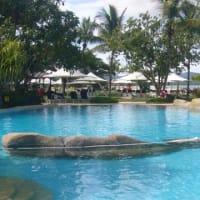 コタキナバルで泳ぐ