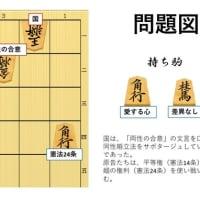 詰将棋で解説する同性婚訴訟