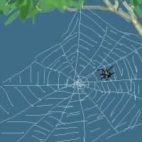 クモの巣の季節