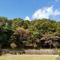 山を愉しむ🏔姫路増位山~広峰山~氷室池を走る