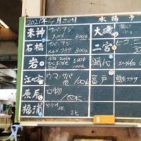 小田原市の鳥「コアジサシ」JSフードシステム