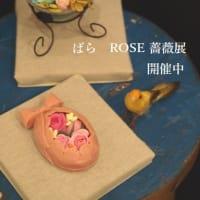 薔薇展開催中