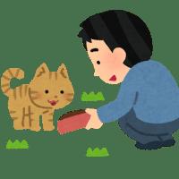 〇日本語教師養成講座〇~体験授業~