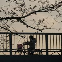東京大空襲の日。悪魔ルーズベルト。-  古山隆夫 2020/03/10
