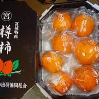 「ころ柿」と「樽柿」の出荷が始まりました。
