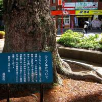 大橋 No.3 (南区)