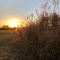 利根川河川敷の夕日、彩雲