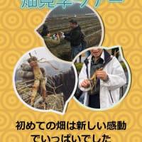 高麗人参畑見学ツアーのお知らせと三月、四月のお話