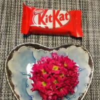 バレンタインデーの超簡単チョコレシピ 2020とフェアトレードチョコ