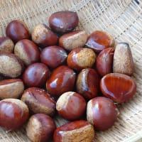 チョコマロン ~旬彩料理つきみ 材料の写真