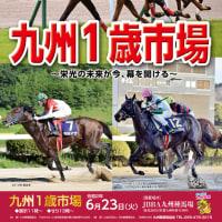 【九州1歳市場2020(Kyusyu Sale)】の「上場馬名簿」が発行!