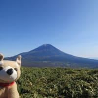 Dragonから愛でる富士山