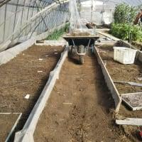 春夏野菜の種まき