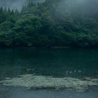 雨の蛇ヶ池