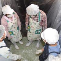 箕面市北部の止々呂美地区で「実サンショウのたる漬け」が行われました
