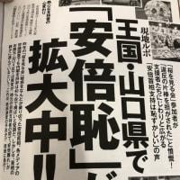 安倍首相の珍答弁「安倍事務所が桜を見る会に行きませんかと幅広く募りましたが、募集はしていません」(爆笑)